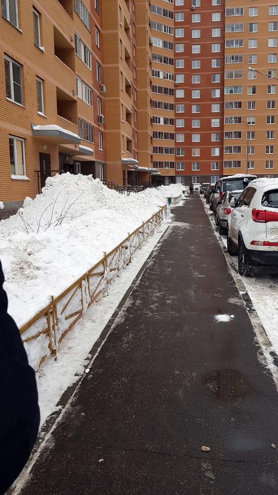 Насадки для бензотриммера для уборки снега